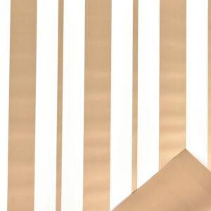 BOBINA PPL -STRISCE- CM100X25 MT ORO/BIANCO